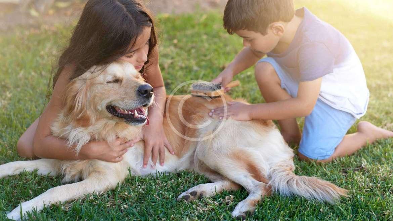 Top 10 Greatest Outdoor Activities that Kids Love!